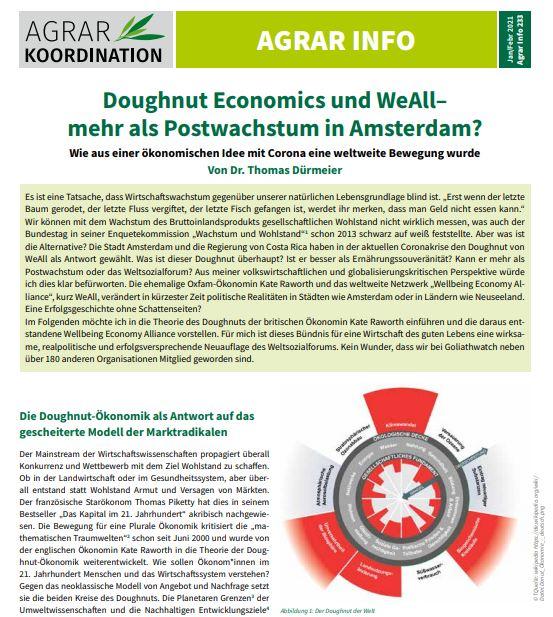 Publikation Doughnut und WeAll